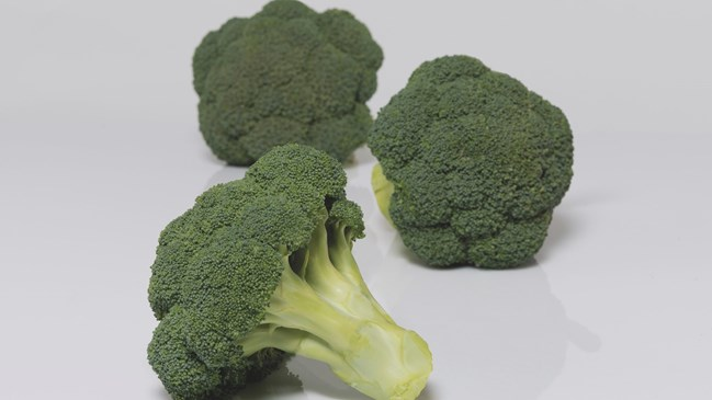 GZ_009010_Broccoli